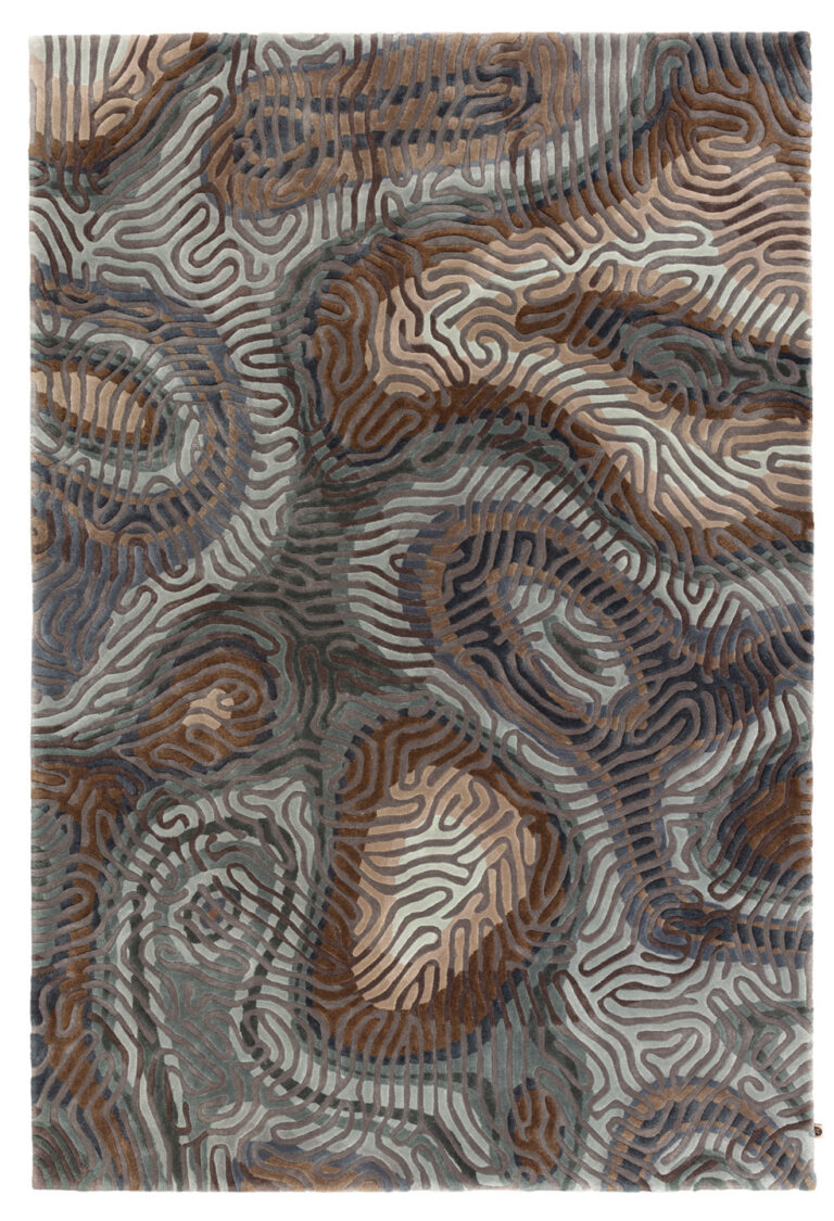 Parallel Brain, sea pine, top view